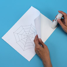 spider web drawing