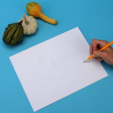 How to draw gourds