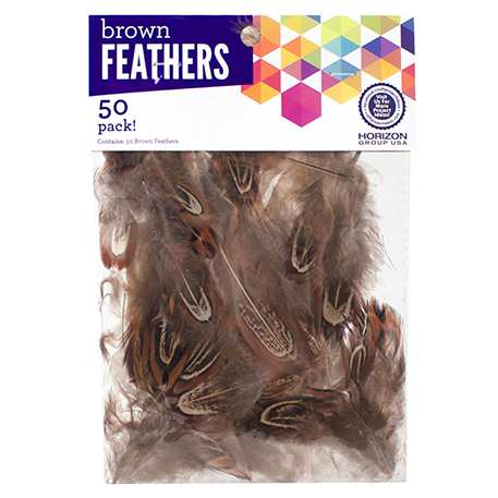 Feathers Brown Craft Project Ideas