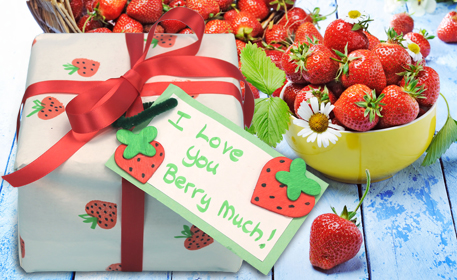 Berry Wrapping Cloth